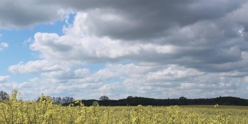 typisch nordwestmecklenburg robin scheibner ©Robin Scheibner