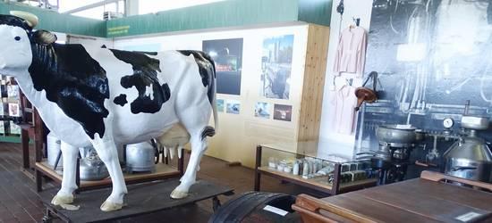 Kreisagrarmuseum