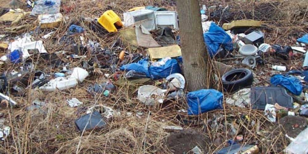 Wilder Müll