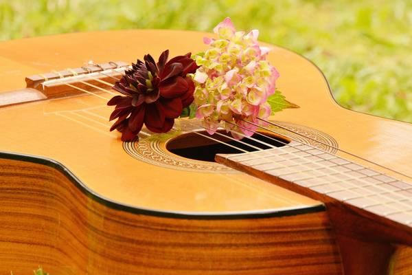 guitar 1585657 1920